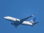 いぶちゃんさんが、シアトル タコマ国際空港で撮影したコンチネンタル航空 737-724の航空フォト(写真)