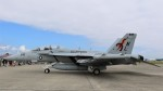 westtowerさんが、横田基地で撮影したアメリカ海軍 EA-18G Growlerの航空フォト(写真)