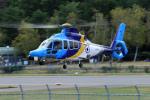 Nao0407さんが、松本空港で撮影した東邦航空 EC155Bの航空フォト(写真)