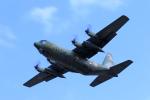 Nao0407さんが、松本空港で撮影した航空自衛隊 C-130H Herculesの航空フォト(写真)