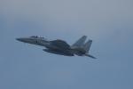 兄ちゃんさんが、名古屋飛行場で撮影した航空自衛隊 F-15DJ Eagleの航空フォト(写真)
