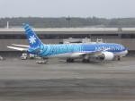 walker2000さんが、成田国際空港で撮影したエア・タヒチ・ヌイ 787-9の航空フォト(写真)