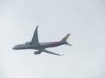 いぶちゃんさんが、シアトル タコマ国際空港で撮影したアシアナ航空 A350-941XWBの航空フォト(飛行機 写真・画像)