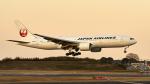 FlyingMonkeyさんが、成田国際空港で撮影した日本航空 777-246/ERの航空フォト(写真)