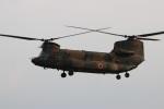 つっさんさんが、熊本空港で撮影した陸上自衛隊 CH-47Jの航空フォト(写真)
