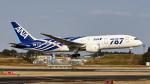 FlyingMonkeyさんが、成田国際空港で撮影した全日空 787-8 Dreamlinerの航空フォト(写真)