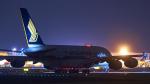 FlyingMonkeyさんが、成田国際空港で撮影したシンガポール航空 A380-841の航空フォト(写真)