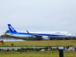 yutopさんが、米子空港で撮影した全日空 A321-211の航空フォト(写真)