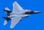 tuco-Gさんが、芦屋基地で撮影した航空自衛隊 F-15DJ Eagleの航空フォト(写真)
