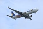 hissanさんが、羽田空港で撮影したスカイマーク 737-81Dの航空フォト(写真)