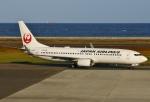あしゅーさんが、大分空港で撮影した日本航空 737-846の航空フォト(写真)