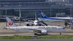 オキシドールさんが、羽田空港で撮影した日本航空 787-8 Dreamlinerの航空フォト(写真)