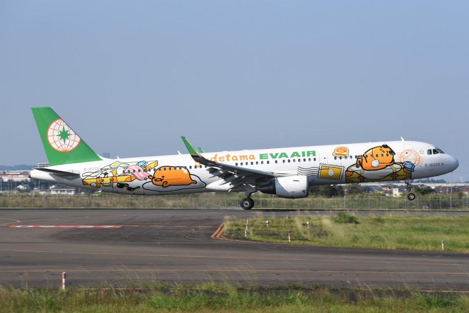kumagorouさんのエバー航空 Airbus A321 (B-16205) 航空フォト