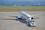 ちゃぽんさんが、小松空港で撮影した日本トランスオーシャン航空 737-8Q3の航空フォト(写真)