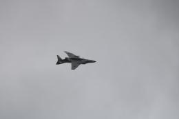 シュンノスケさんが、芦屋基地で撮影した航空自衛隊 RF-4EJ Phantom IIの航空フォト(飛行機 写真・画像)
