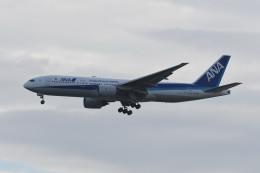 kuro2059さんが、羽田空港で撮影した全日空 777-281/ERの航空フォト(写真)