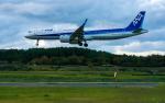 ひげじいさんが、庄内空港で撮影した全日空 A321-272Nの航空フォト(写真)