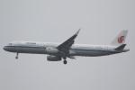 camelliaさんが、成田国際空港で撮影した中国国際航空 A321-232の航空フォト(写真)