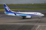 Tia spotterさんが、羽田空港で撮影した全日空 737-781の航空フォト(写真)