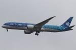 camelliaさんが、成田国際空港で撮影したエア・タヒチ・ヌイ 787-9の航空フォト(写真)