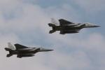 DONKEYさんが、新田原基地で撮影した航空自衛隊 F-15J Eagleの航空フォト(写真)