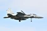 kon chanさんが、那覇空港で撮影した航空自衛隊 F-15DJ Eagleの航空フォト(写真)