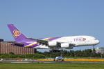 SGR RT 改さんが、成田国際空港で撮影したタイ国際航空 A380-841の航空フォト(写真)