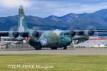アミーゴさんが、松本空港で撮影した航空自衛隊 C-130H Herculesの航空フォト(写真)