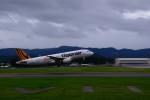 Daisuke_aizさんが、花巻空港で撮影したタイガーエア台湾 A320-232の航空フォト(写真)