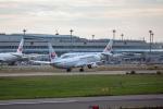 こうきさんが、新千歳空港で撮影した日本航空 737-846の航空フォト(写真)