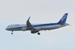 kuro2059さんが、羽田空港で撮影した全日空 A321-211の航空フォト(写真)