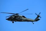 Wasawasa-isaoさんが、名古屋飛行場で撮影した航空自衛隊 UH-60Jの航空フォト(写真)