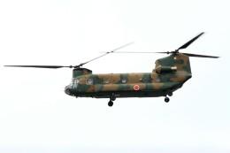 T.Sazenさんが、中部方面総監部上空で撮影した陸上自衛隊 CH-47Jの航空フォト(飛行機 写真・画像)