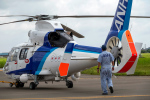 こうきさんが、札幌飛行場で撮影したオールニッポンヘリコプター AS365N3 Dauphin 2の航空フォト(写真)