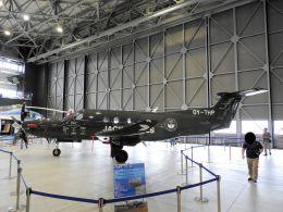 White Pelicanさんが、名古屋飛行場で撮影したデンマーク企業所有 PC-12/47Eの航空フォト(飛行機 写真・画像)