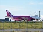 PW4090さんが、関西国際空港で撮影したピーチ A320-214の航空フォト(写真)