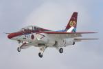 EXIA01さんが、芦屋基地で撮影した航空自衛隊 T-4の航空フォト(写真)
