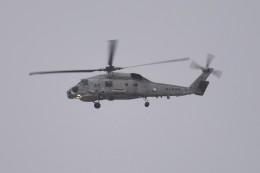 kumagorouさんが、宮城県丸森町で撮影した海上自衛隊 SH-60Jの航空フォト(飛行機 写真・画像)