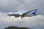 tsubameさんが、福岡空港で撮影した全日空 787-8 Dreamlinerの航空フォト(写真)