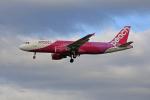 tsubameさんが、福岡空港で撮影したピーチ A320-214の航空フォト(写真)