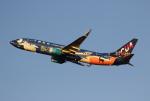 MOHICANさんが、福岡空港で撮影した中国聯合航空 737-8HXの航空フォト(写真)