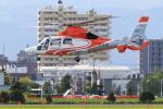 noriphotoさんが、札幌飛行場で撮影した北海道防災航空隊 AS365N3 Dauphin 2の航空フォト(写真)