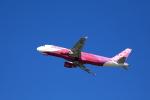 TAKAHIDEさんが、新潟空港で撮影したピーチ A320-214の航空フォト(写真)
