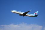 TAKAHIDEさんが、新潟空港で撮影した大韓航空 737-8BKの航空フォト(写真)