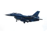 TAKAHIDEさんが、岐阜基地で撮影した航空自衛隊 F-2Bの航空フォト(写真)