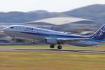 小型機専門家さんが、高知空港で撮影した全日空 737-8ALの航空フォト(写真)