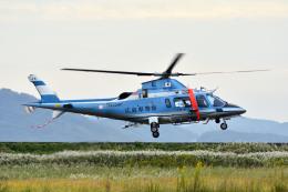 Gambardierさんが、岡南飛行場で撮影した広島県警察 A109E Powerの航空フォト(写真)