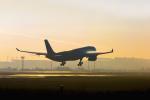mameshibaさんが、成田国際空港で撮影したタイ・エアアジア・エックス A330-343Xの航空フォト(写真)
