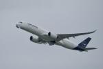 飛行機ゆうちゃんさんが、羽田空港で撮影したルフトハンザドイツ航空 A350-941XWBの航空フォト(写真)