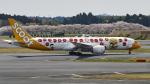 FlyingMonkeyさんが、成田国際空港で撮影したスクート 787-9の航空フォト(写真)